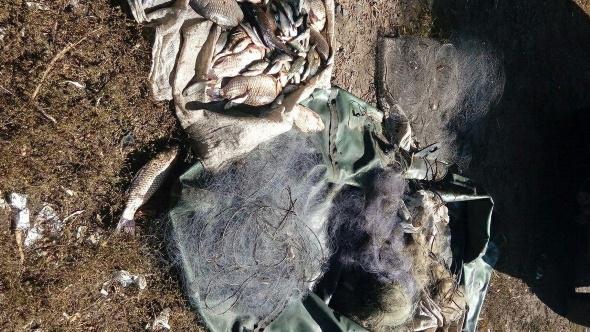 Порушник завдав майже 7 тис. грн збитків, - Дніпропетровський рибоохоронний патруль