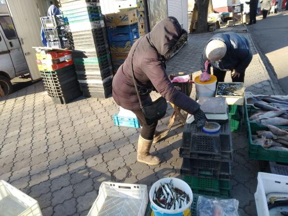 Протягом тижня зафіксовано майже 90 порушень, - Дніпропетровський рибоохоронний патруль